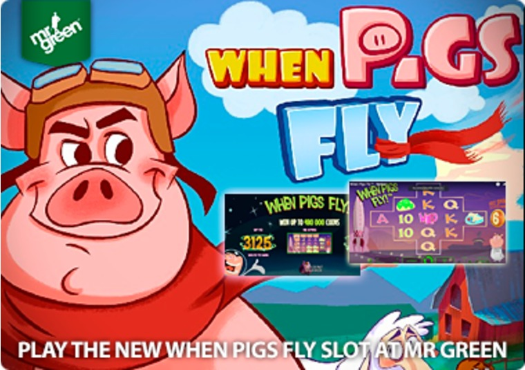 casino slot online english when pigs fly