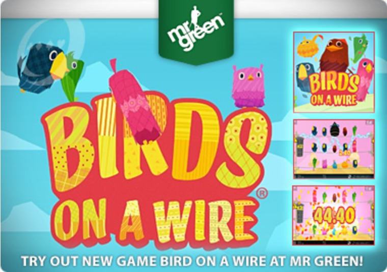 Try Out New Game Bird on a Wire at Mr Green