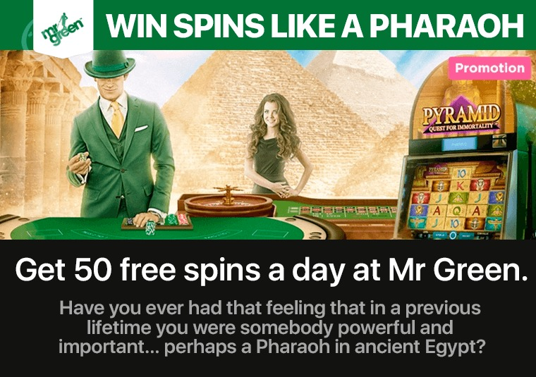 Get 50 free spins a day at Mr Green
