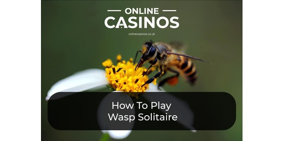 How To Play Wasp Solitaire